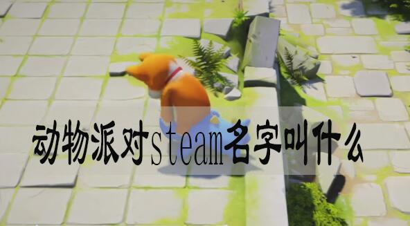 动物派对steam名字叫什么