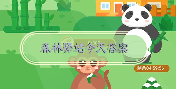 大熊猫幼崽的体重大约只有妈妈体重的