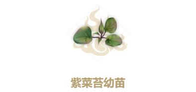 妄想山海紫菜苔幼苗怎么获得