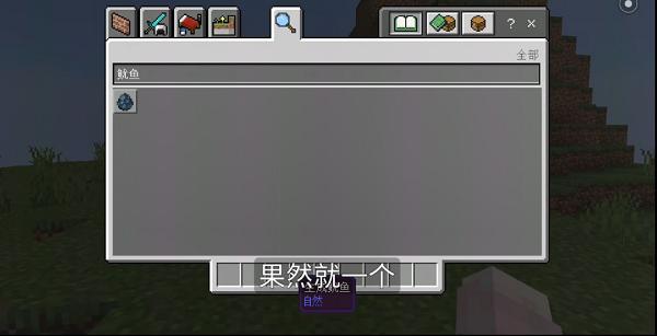我的世界1.16.210.61